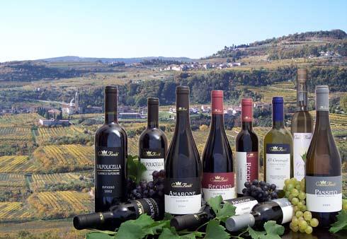 Valpolicella, la tierra del vino