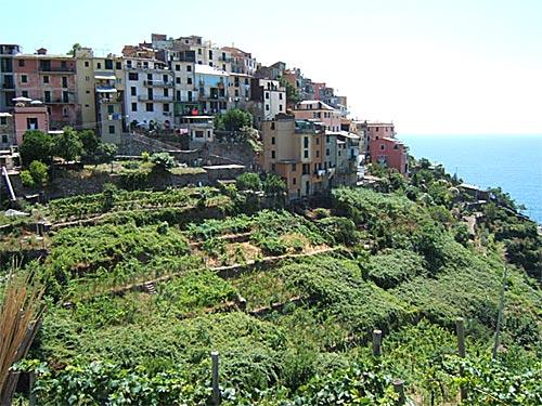 Corniglia, otro hermoso pueblo de Cinque Terre