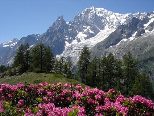 Monte Bianco, ecoturismo en Italia